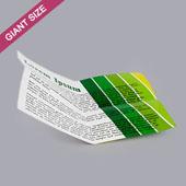 Custom Cross Fold Booklet for Giant Size
